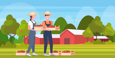 couple farmers holding red ripe apples crates man woman agricultural workers harvesting fruits eco farming concept farmland countryside landscape flat full length vector illustration