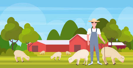 Berger avec bâton troupeau troupeau de moutons blancs souriant agriculteur mâle élevage de moutons eco agriculture concept terres agricoles paysage de campagne plat pleine longueur horizontale illustration vectorielle