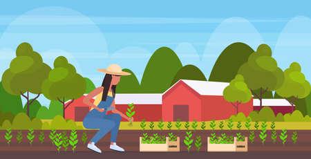 La agricultora siembra de plántulas de agricultura mujer afroamericana trabajador agrícola jardinería concepto de agricultura ecológica tierras de cultivo paisaje paisaje plano horizontal de longitud completa ilustración vectorial