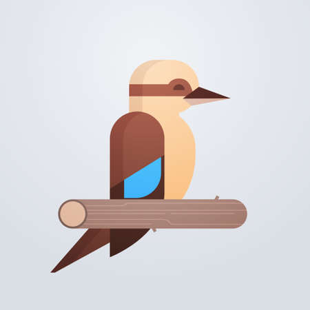 kookaburra bird icon cute cartoon wild animal symbol wildlife species fauna concept flat vector illustration