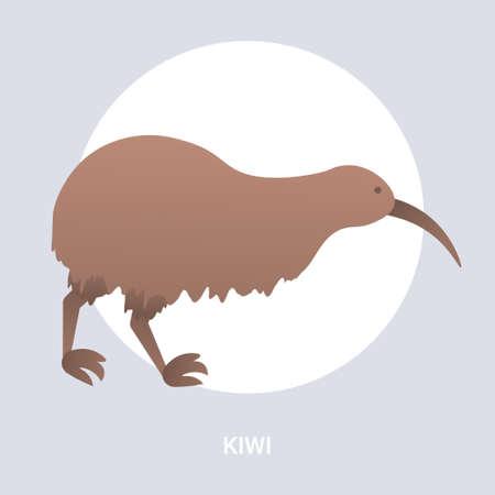brown kiwi icon cartoon endangered wild australian animal symbol wildlife species fauna concept flat vector illustration 向量圖像