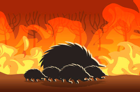 echidna silhouettes running from forest fires in australia animals dying in wildfire bushfire burning trees natural disaster concept intense orange flames horizontal vector illustration