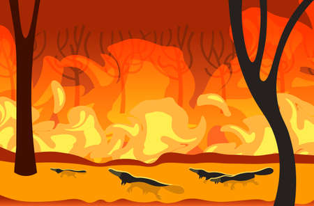 platypus silhouettes running from forest fires in australia animals dying in wildfire bushfire burning trees natural disaster concept intense orange flames horizontal vector illustration