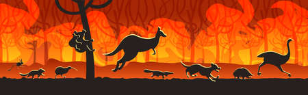 australian animals silhouettes running from forest fires in australia wildfire bushfire burning trees natural disaster concept intense orange flames horizontal vector illustration Stock Illustratie