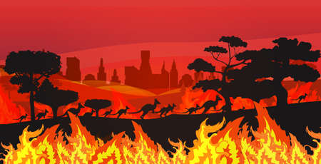 silhouettes of kangaroos running from forest fires in australia animals dying in wildfire bushfire burning trees natural disaster concept intense orange flames horizontal vector illustration