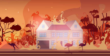 animals running from forest fires in australia wildfire burning houses natural disaster concept intense orange flames horizontal vector illustration Illustration