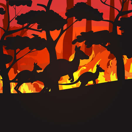 silhouettes of kangaroos running from forest fires in australia animals dying in wildfire bushfire burning trees natural disaster concept intense orange flames vector illustration
