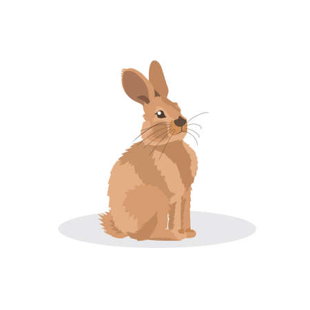 rabbit icon cartoon endangered wild australian animal symbol wildlife species fauna concept flat vector illustration