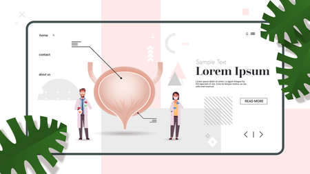 doctors couple inspecting checking urinary bladder human internal organ examination treatment healthcare medicine concept full length copy space horizontal vector illustration Illustration