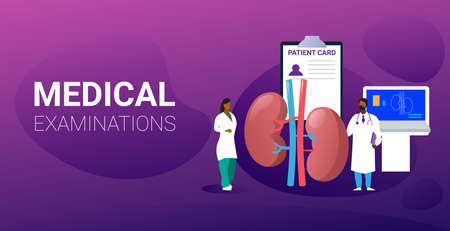 doctors team examining human kidneys medical consultation internal organ inspection examination treatment concept horizontal full length vector illustration
