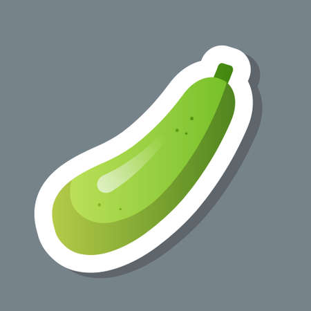 fresh green squash zucchini courgette sticker tasty vegetable icon healthy food concept vector illustration Ilustracja