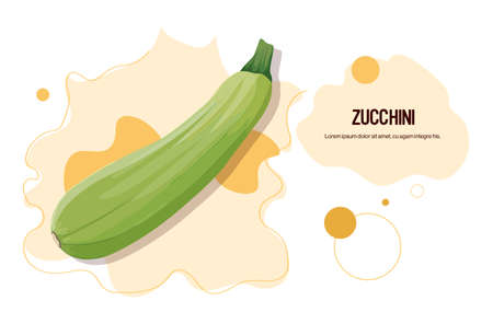 fresh zucchini sticker tasty vegetable icon healthy food concept horizontal copy space vector illustration