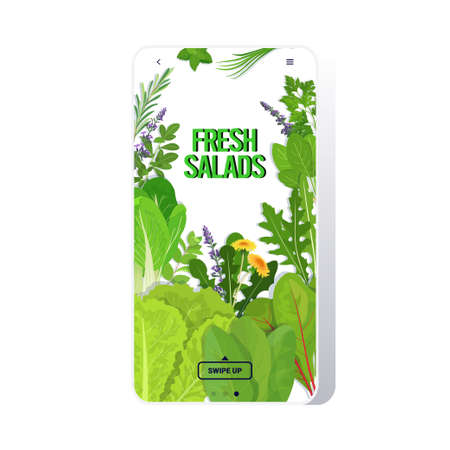 mix of different fresh salads leaves healthy nutrition vegetarian food concept smartphone screen mobile app vector illustration
