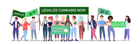 mix race people holding legalize cannabis now protest poster medical marijuana legalization drugs consumption concept horizontal full length vector illustration Illustration