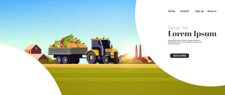 tractor with trailer full of fresh ripe harvested vegetables organic food seasonal products harvesting concept farmland field countryside background horizontal copy space vector illustration