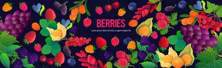 set fresh juicy berries composition healthy natural food concept horizontal copy space vector illustration