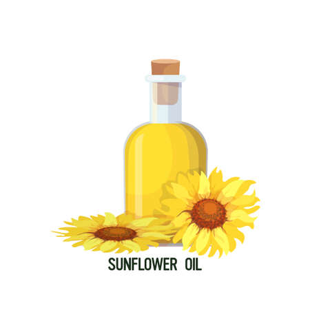 fresh sunflower oil glass bottle isolated on white background vector illustration 일러스트