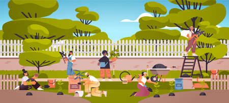 gardeners taking care of plants people working together planting gardens flowers in backyard gardening concept  イラスト・ベクター素材