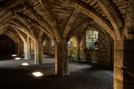 crypt: Underground crypt stone walls and vaulted ceiling
