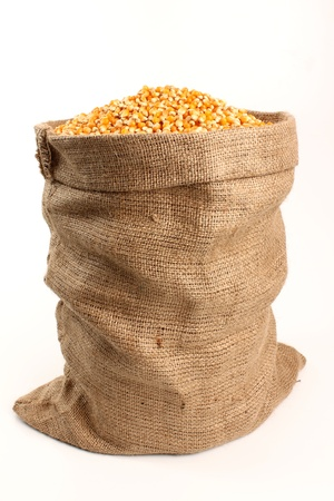 sack of corn on a white background