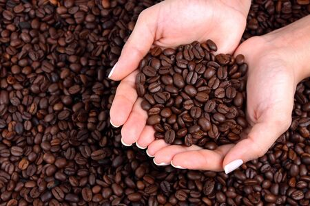 woman holding many coffee beans in his hand