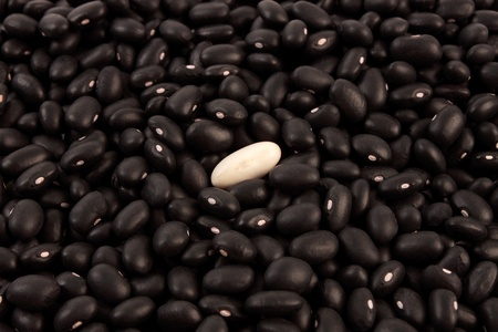 many black beans with a white bean