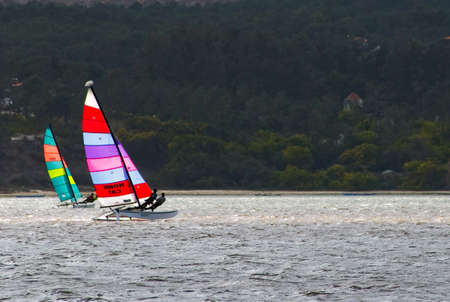 hobie: hobie cat catamaran sailing on shinning water Stock Photo