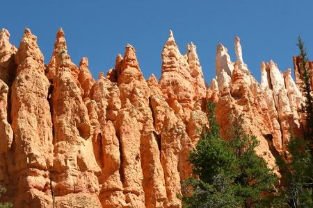 hoodoos: Hoodoos Wall - Bryce Canyon, Utah