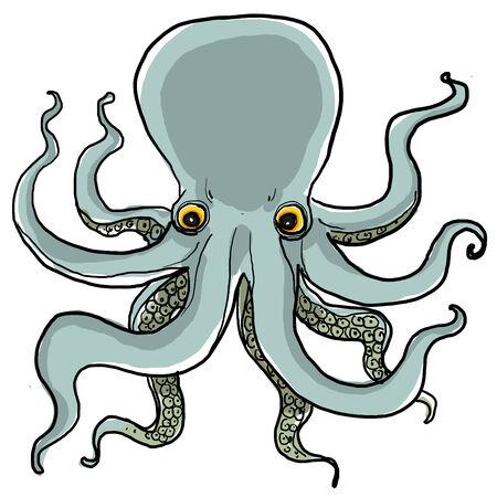 naturalist: Octopus painting