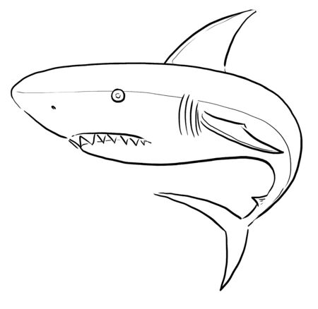 White Shark ling art photo