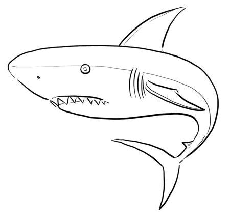 damaging: White Shark ling art