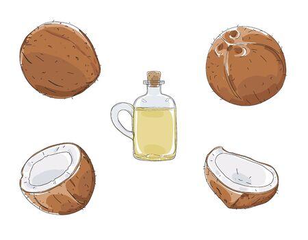 coconut oil raw set hand drawn vector elements cute art illustration