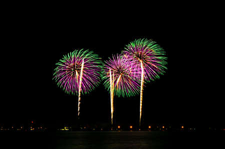 Colorful fireworks display against a dark night sky.