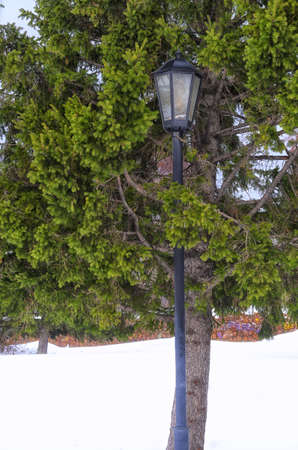 snowlandscape: Lantern in the park