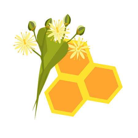 linden blossom: Honeycomb with flowing honey illustration. Bee healthy orange honeycomb hexagon nature beeswax food. Beehive cell gold pattern honeycomb design shape organic hive linden blossom.