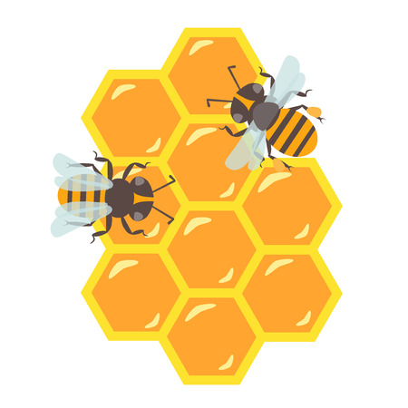 honeyed: Honeycomb with flowing honey illustration Illustration
