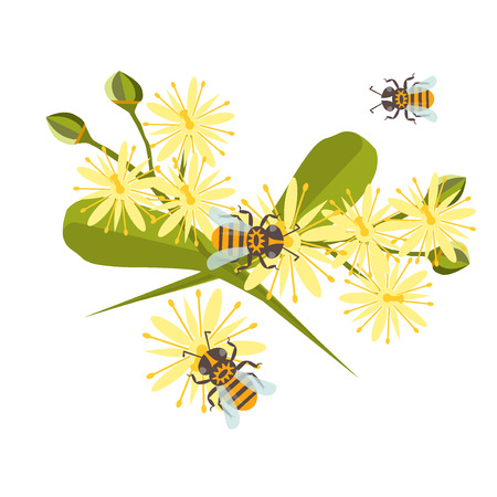 linden blossom: Honey bee with linden blossom. Bee healthy orange honeycomb linden blossom hexagon nature flowers. Beehive linden blossom gold pattern honey bee design shape organic hive linden blossom.