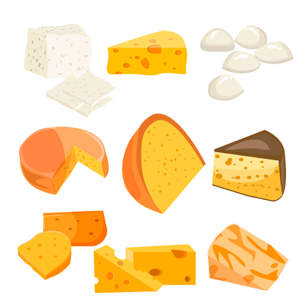 Cheese types. Modern flat style realistic vector illustration icons isolated on white background. Gourmet product white cheese slice. Food dairy slice gourmet cheese cheddar yellow snack piece. Illustration