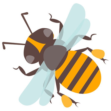 Vector happy cartoon bee flying delicious honey insect isolated animal