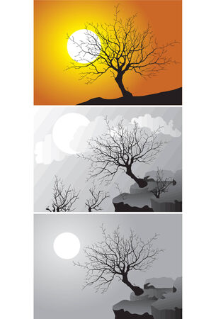 ThreeScenes of tree in different environment - vector illustration Vector