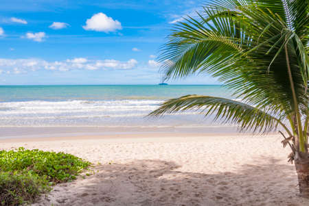 Seaview from resort, Tropical beach  with coconut palm trees, Thailand Stock Photo