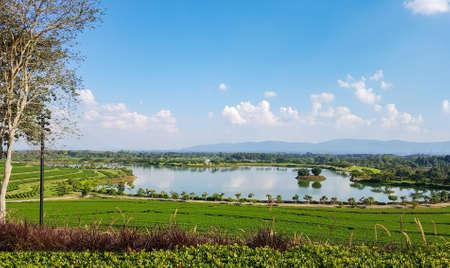 Vista paesaggio dell'azienda agricola del tè, lago, albero, montagna e cielo blu