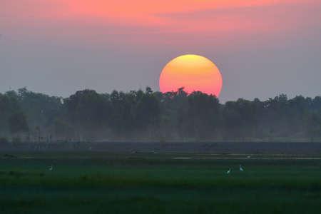 Sunset rural field landscape background Stock Photo