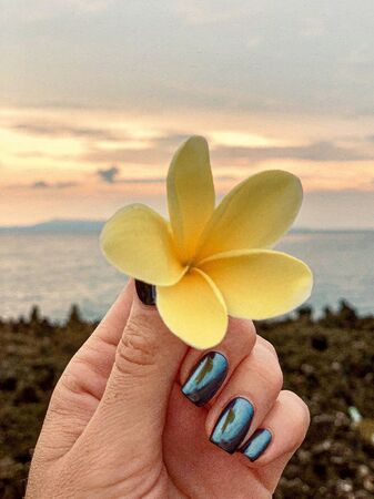 Yellow flower in a hand on background sunrise tropical ocean and nature
