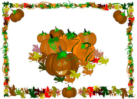 patch of pumpkins border on white  Illustration