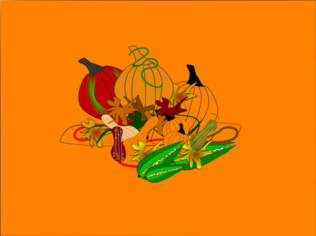 harvest for fall of colors and food on orange background Vector