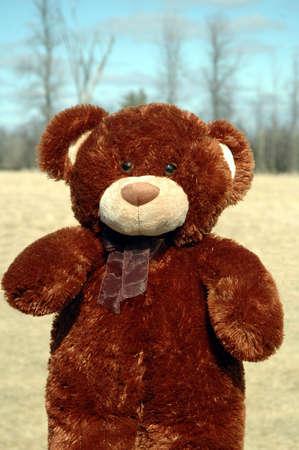furry stuff: cuddly brown bear