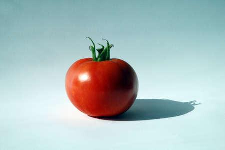 single tomatoe on white background photo