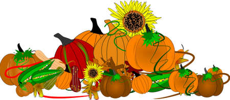 feast: pumpkin border on white Illustration