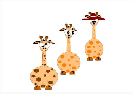 cartoon giraffes on white